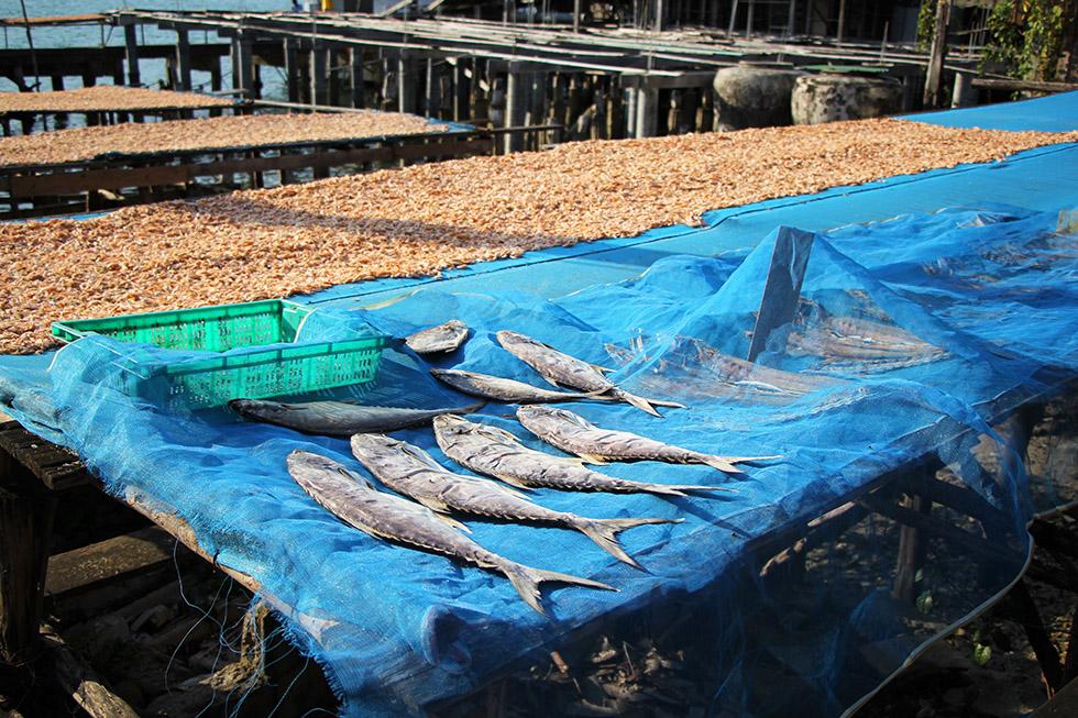 Fishing Village in northern Koh Kood