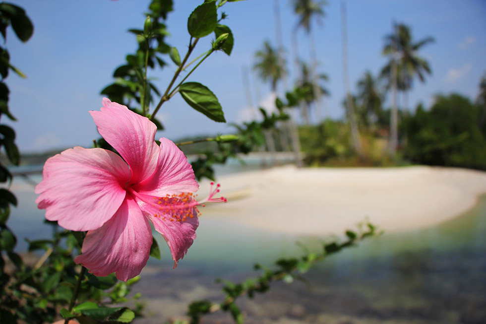Siam Bay in Koh Kood