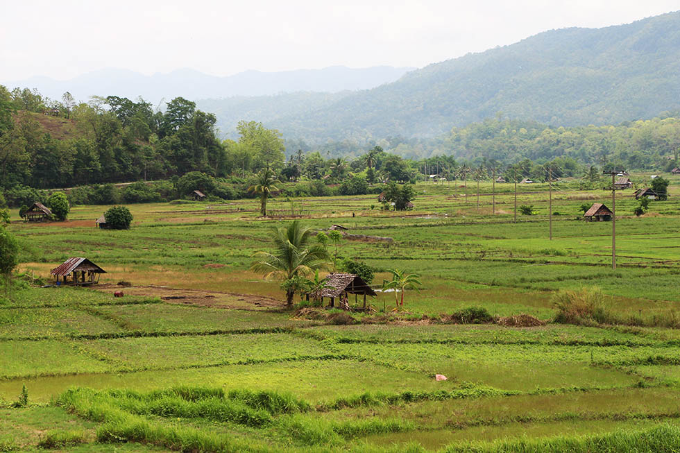 Mae Hong Son's countryside