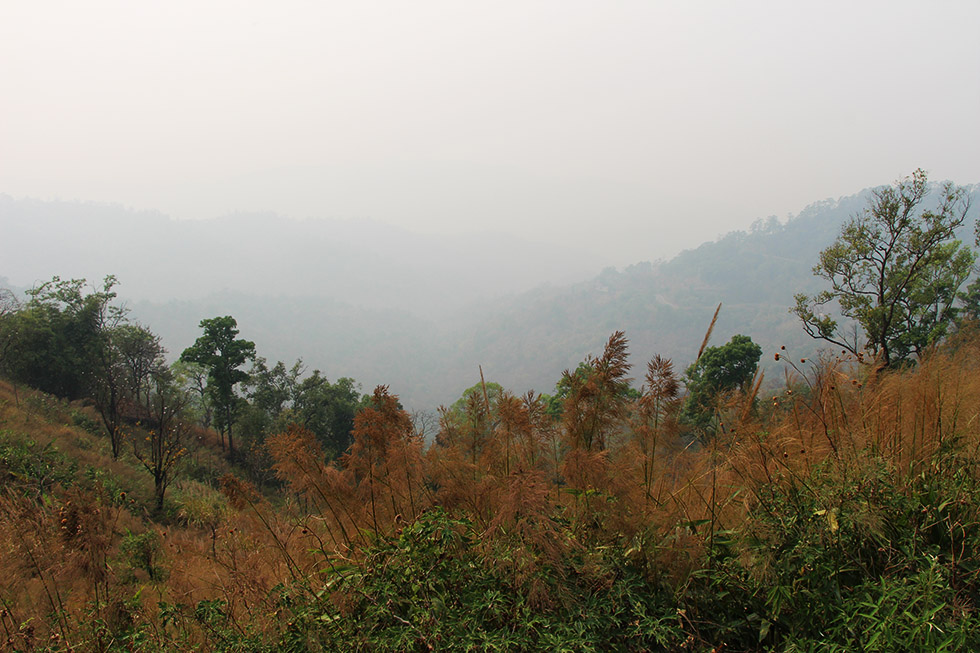 View during the Smokey Season; none