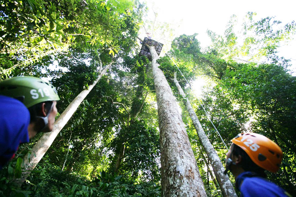 Abseiling, are you brave enough? - Ziplining Chiang Mai