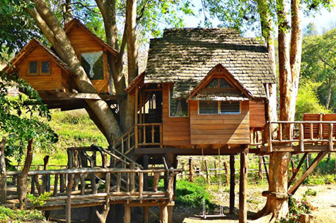 Treehouse Chiang Mai