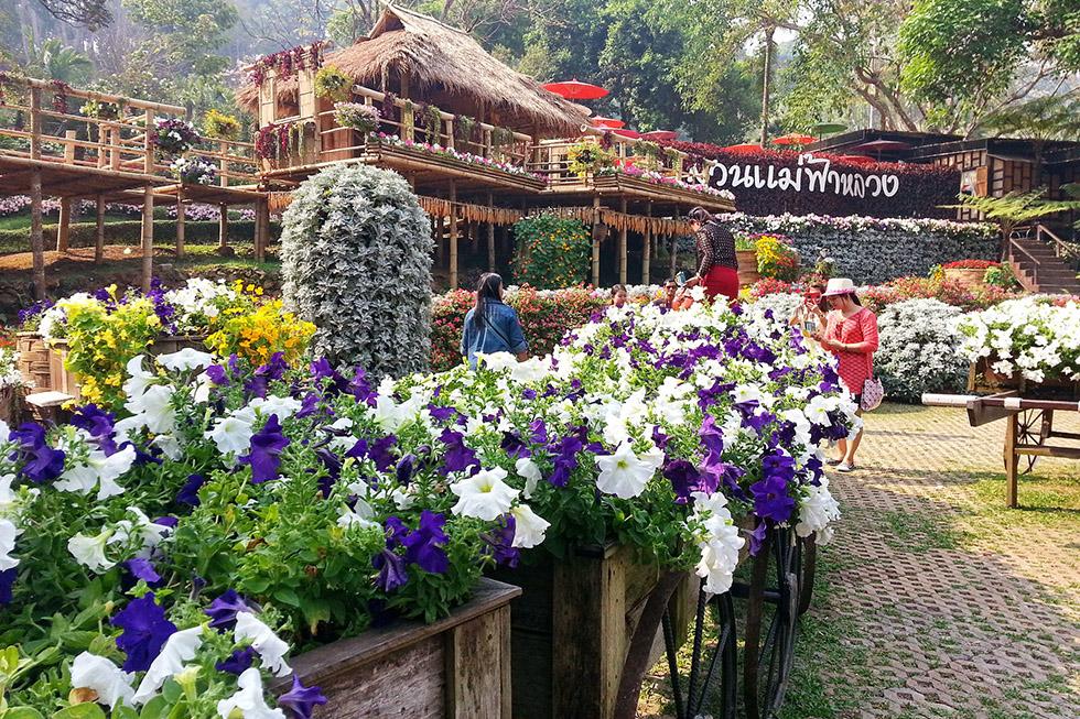 Doi Tung Gardens