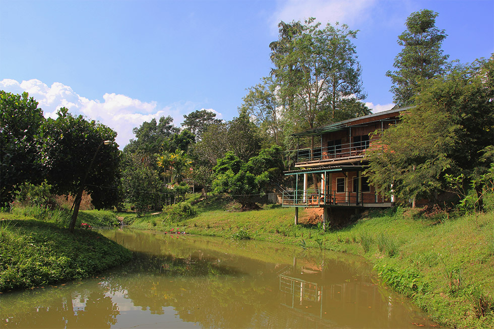 Dreamhome Guesthouse in Chiang Dao