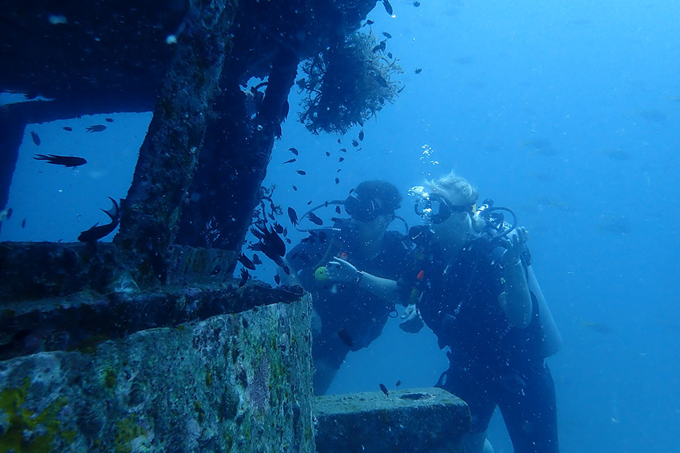 Diving at HTMS Sattakut Wreck in Koh Tao