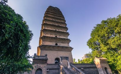 Private Small Wild Goose Pagoda Tour with Shadow Puppet Performance