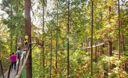Private Vancouver Tour to Capilano Bridge and Grouse Mountain