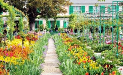8.5-Hour Monet's Garden Bike Tour from Paris