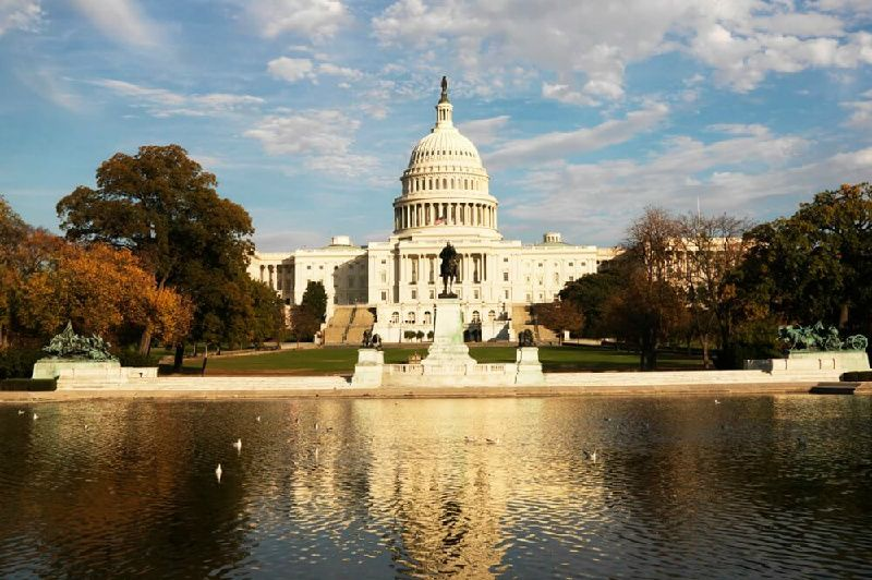 1-Day Washington D.C. Tour From New York