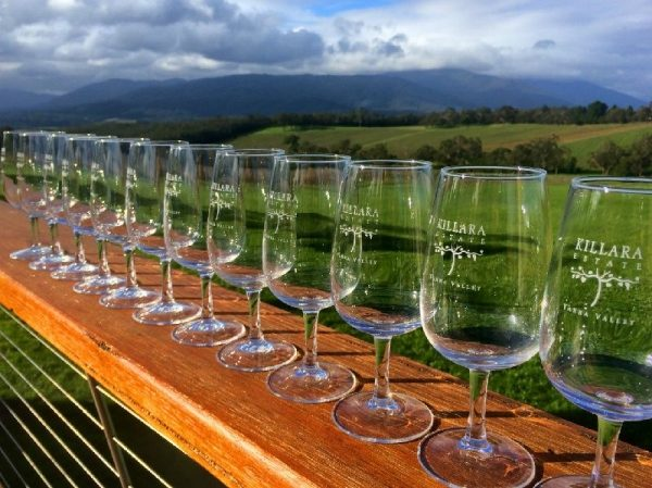 1-Day Yarra Valley Wine, Cheese and Chocolates Tour