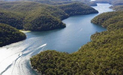 Ku-Ring-Gai Chase National Park Day Trip