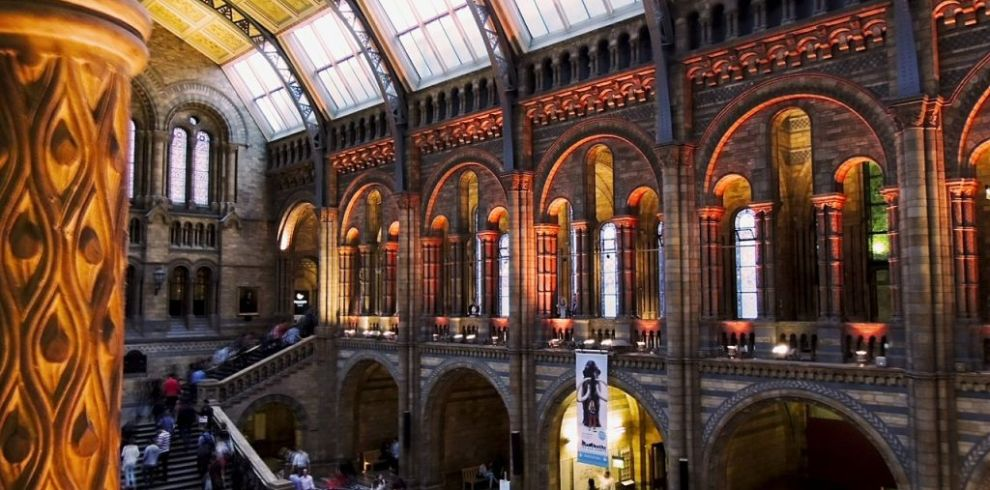 Natural History Museum of London Guided Tour