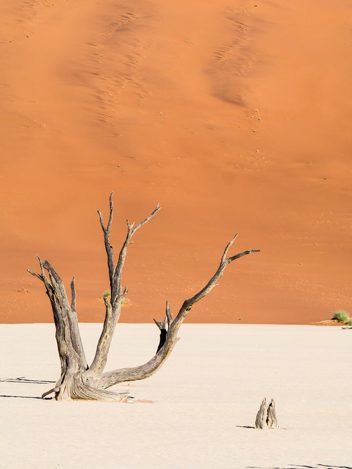Amazing Scenery in Namibia