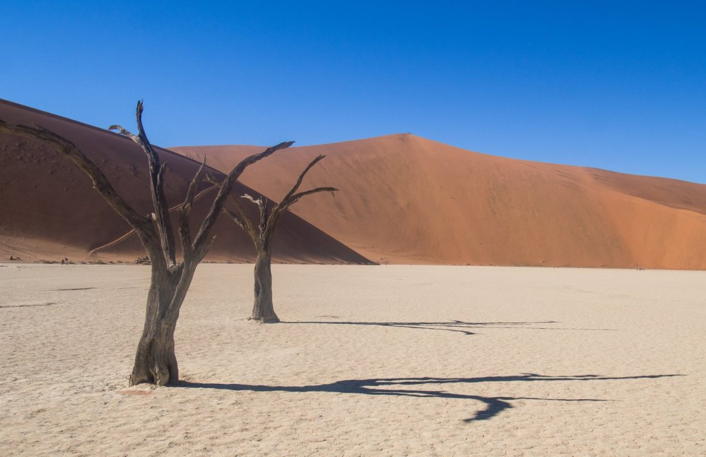 Big Daddy Dune and Deadvlei