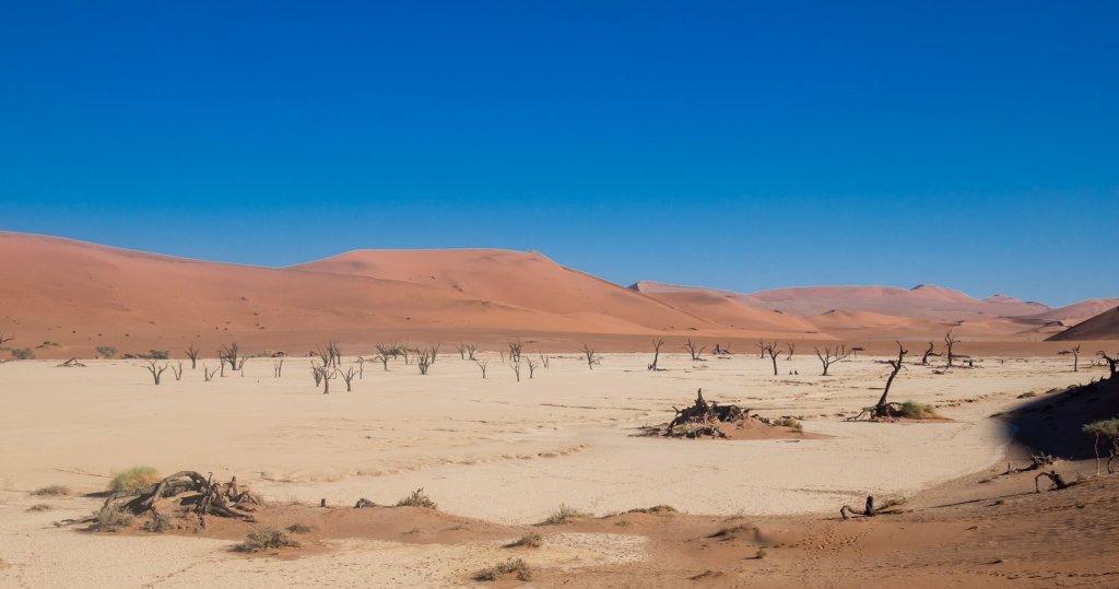 Deadvlei, near Sossusvlei in Namibia