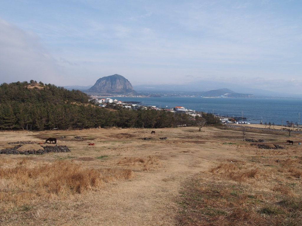 Beautiful Views along the Jeju Olle Trail