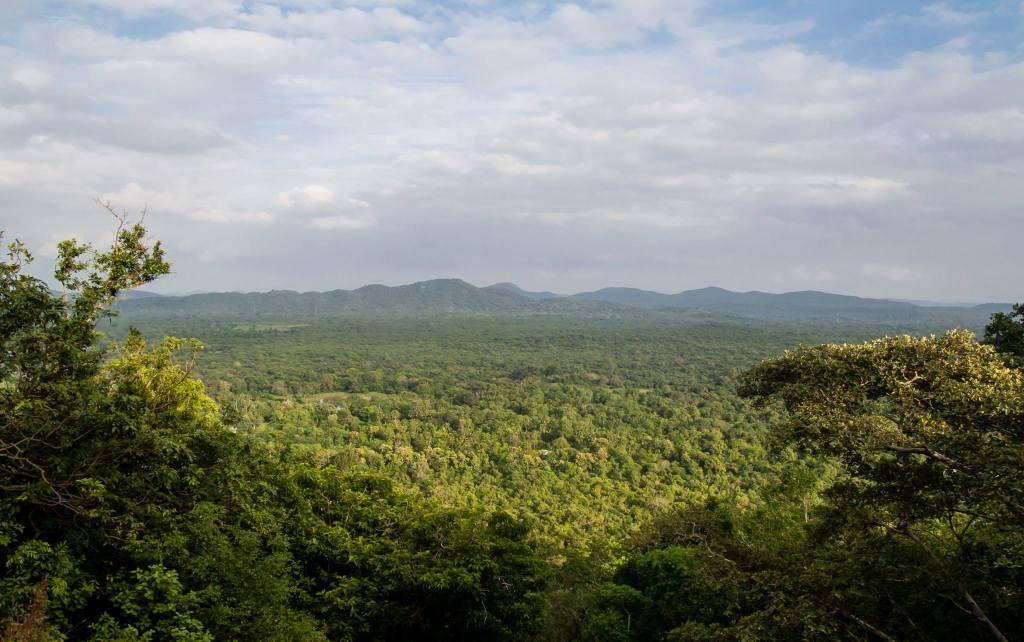 Views while climbing Pidurangala Rock