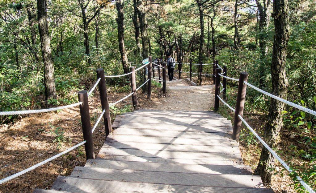 Gyeyangsan Trail View
