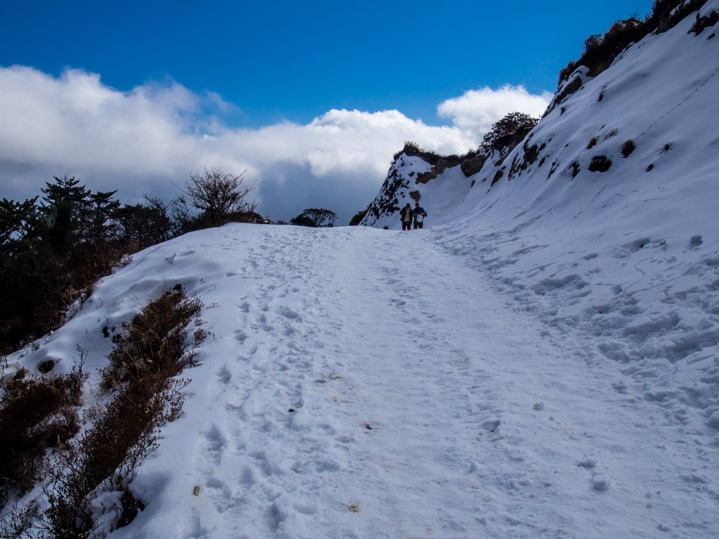 Snow on the trail leading to Sandakphu