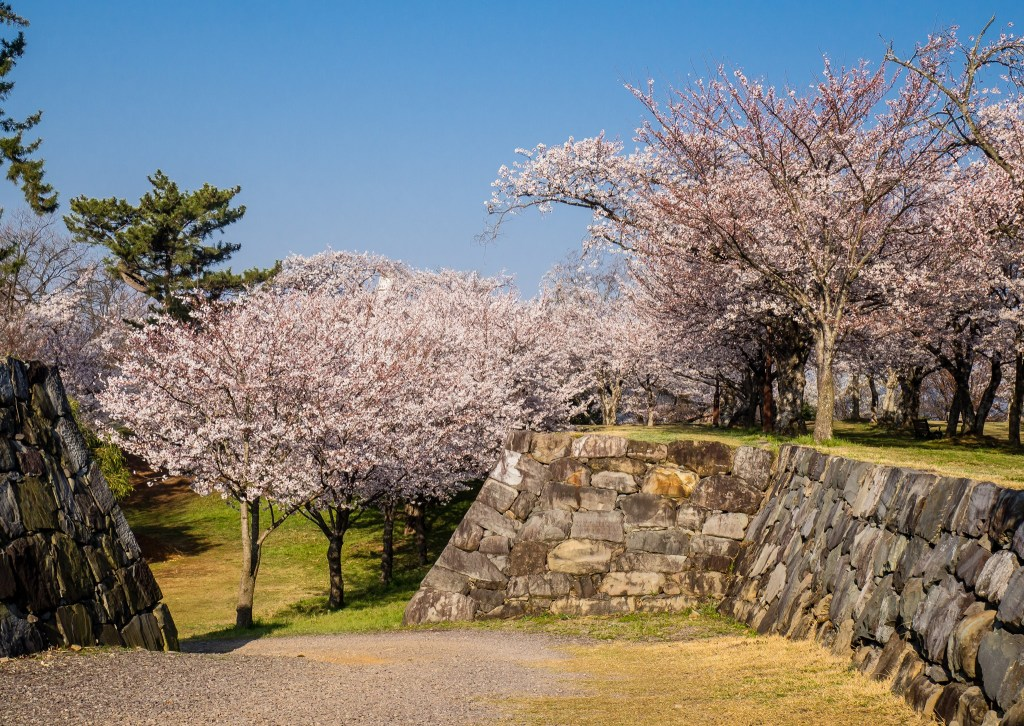 Fortress wall at Seonjin Park in Sacheon