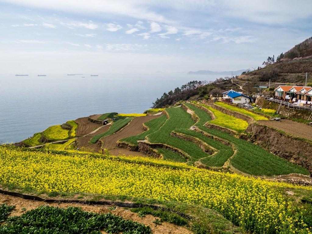 Beautiful views at Daraengi VIllage in Namhae Island