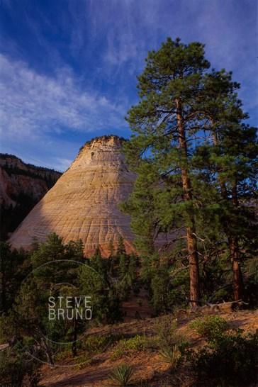 Zion National Park, Utah - Steve Bruno - gottatakemorepix