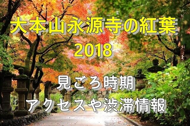 大本山 永源寺2018の紅葉見ごろ時期とアクセス情報