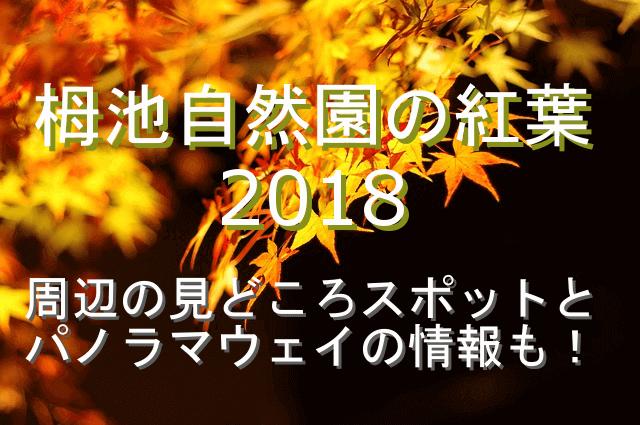 栂池自然公園の紅葉2018の見どころスポットとパノラマウェイ