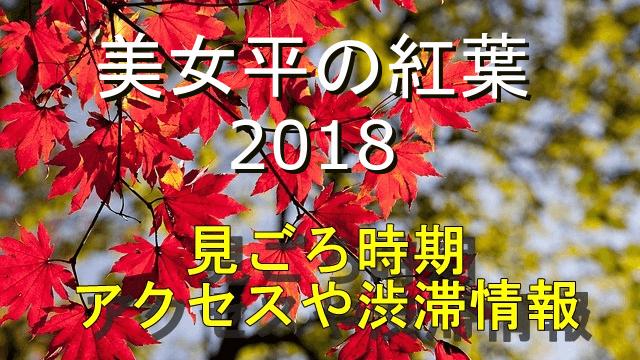 美女平の紅葉2018の見ごろ時期やアクセス情報