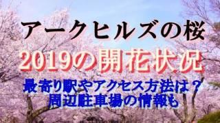 アークヒルズの桜開花状況2019アクセスや駅駐車場情報