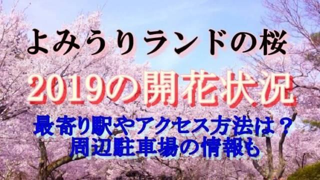 よみうりランドの桜開花状況2019最寄り駅やアクセス駐車場も