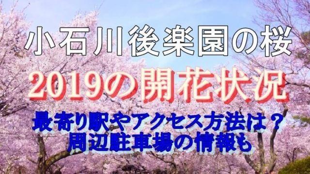 小石川後楽園の桜の開花状況と最寄り駅やアクセス方法・周辺のオススメ駐車場の情報についてご紹介しています