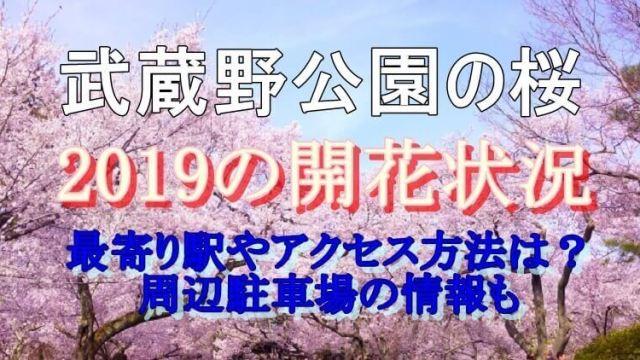 武蔵野公園開花状況
