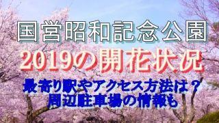 国営昭和記念公園の開花状況やアクセス方法などの情報をご紹介致します