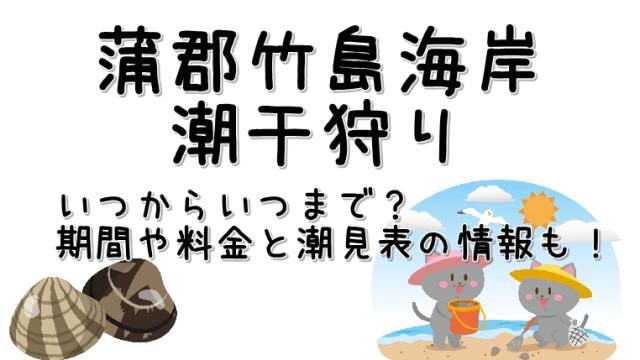 潮干狩り蒲郡竹島海岸