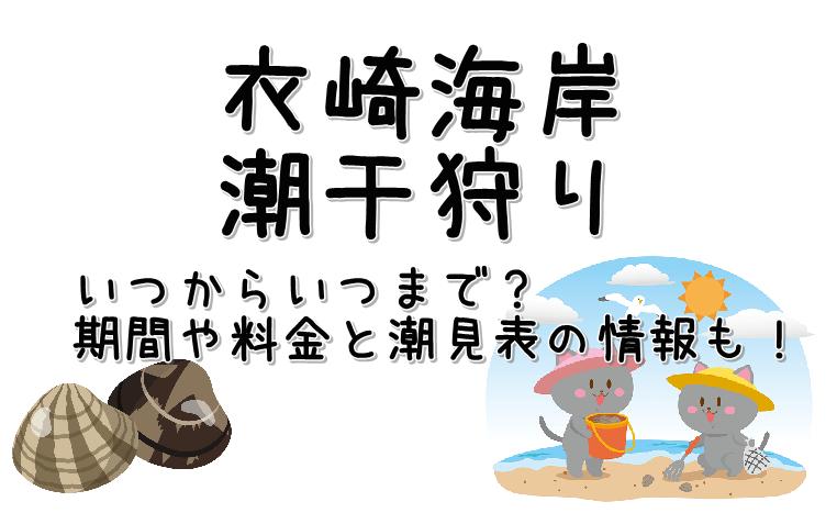 潮干狩り衣崎海岸