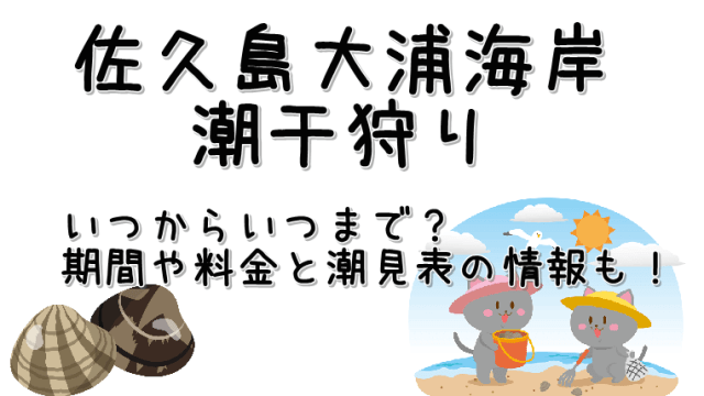 佐久島大浦海岸の潮干狩り期間と料金・潮見表についてのご紹介です