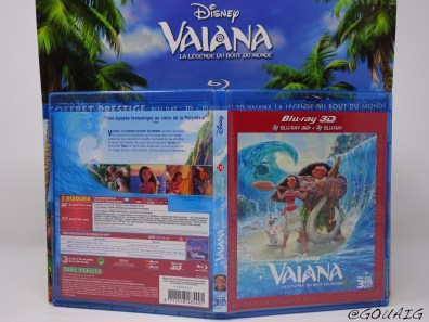Unboxing Coffret Prestige Vaiana - Gouaig - 15