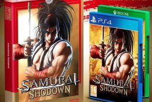 Samurai Shodown collector