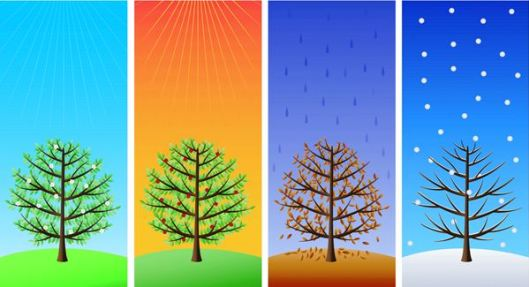 four-seasons-of-business