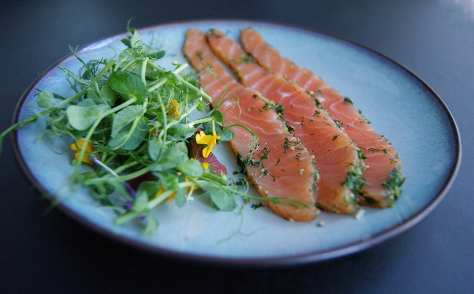 Gravlax or gravlox, homemade with lots of dill