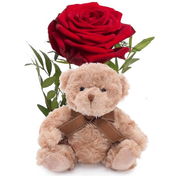 Send blomster på døra - Romantisk rose med bamse