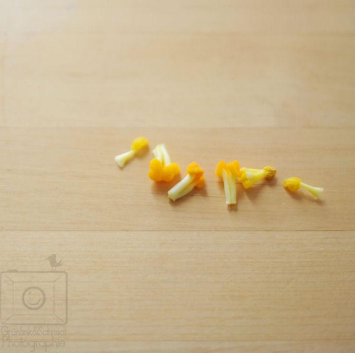 03 Zucchini Blossoms kl