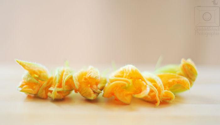 05 Zucchini Blossoms kl