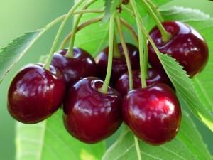 Autor: Hans Fuente: http://pixabay.com/es/cereza-cereza-dulce-rojo-frutas-167341/