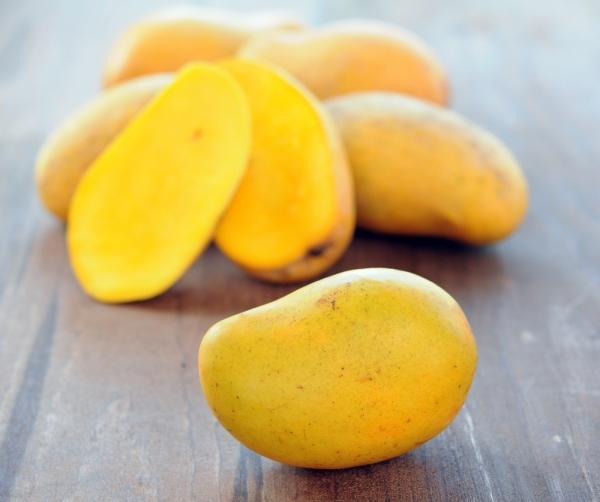 types of Mexican mango manila