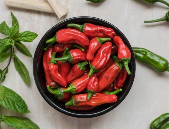Chile tabiche, the distinctive hotness of food in the Sierra Sur de Oaxaca 0
