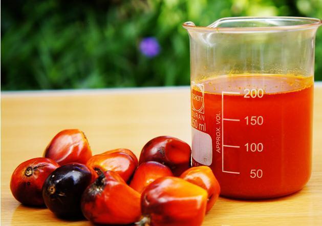 crude_palm_oil-1