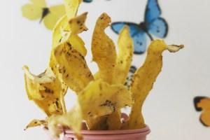 receta de snacks saludables con plátano macho verde