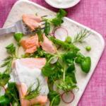 Poached Salmon and Farro Salad